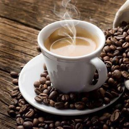 Brew Coffee Bundle - French Press Bundle