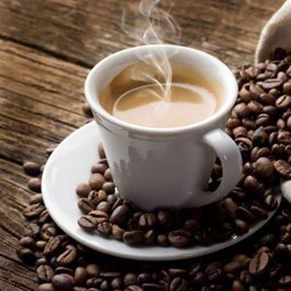 Brew Coffee Bundle - Hot Brew Bundle